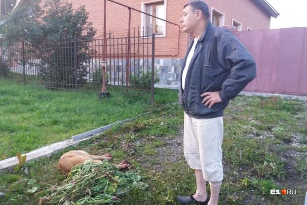 Олег Даринцев расправился с Каштаном после того, как он подрался с его собакой