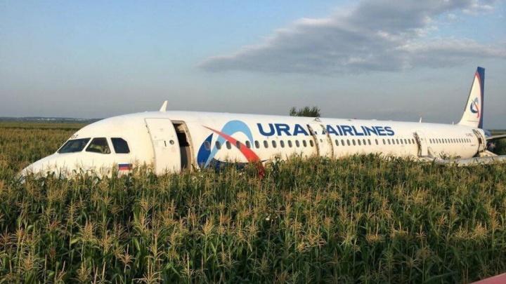 Компания из Челябинска помогла освободить кукурузное поле в Подмосковье от аварийно севшего самолёта