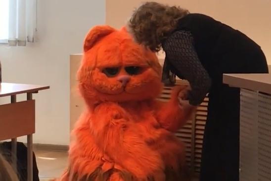 Огромный рыжий кот произвёл фурор на паре