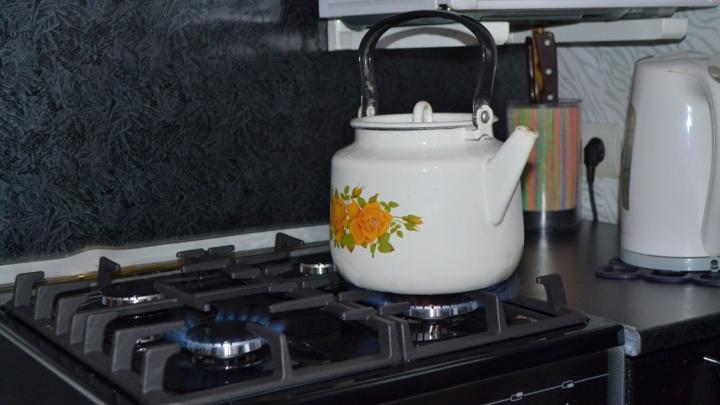Жители деревни Заимки Лысьвенского городского округа смогут подключить дома к газу
