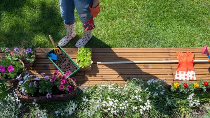 Как садоводческому товариществу открыть счет в банке и зачем это нужно в 2019 году