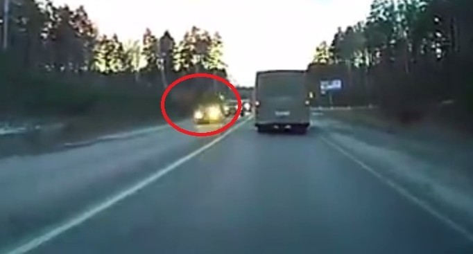 Камера регистратора сняла момент столкновения иномарки с лосихой на ЕКАД