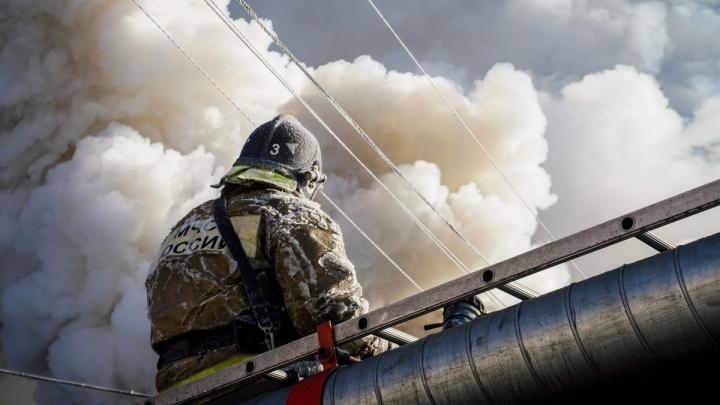 «После пожара в Кузбассе пошли проверять на пинковой тяге»