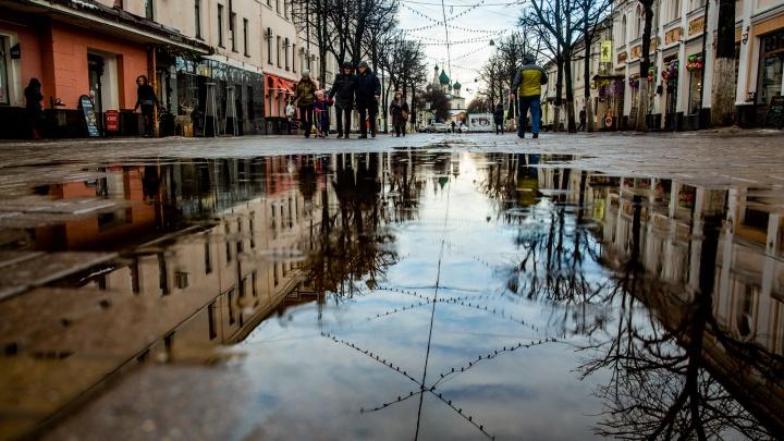 Новые погодные рекорды: синоптики дали прогноз на февраль и март