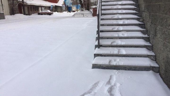 Метели и гололедица: в Челябинскую область вернулась зима