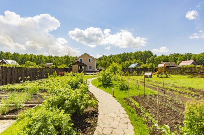 Большой сад обещает богатый урожай осенью