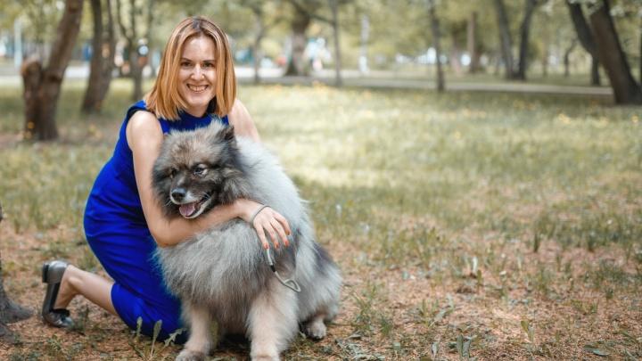 25 породистых собак пришли фотографироваться с новосибирцами в Первомайский сквер