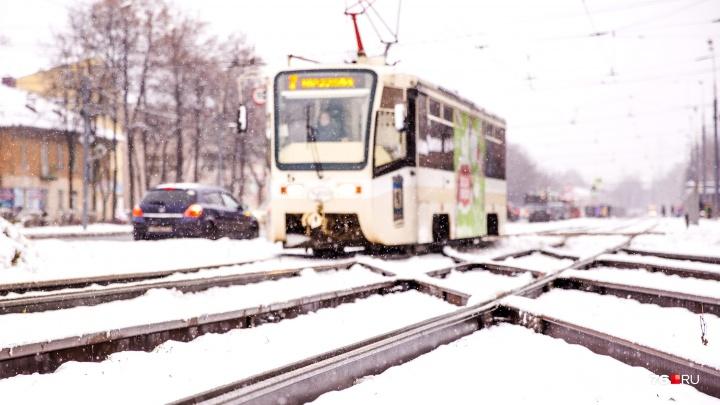 В Ярославле из-за автохамов встало движение трамваев