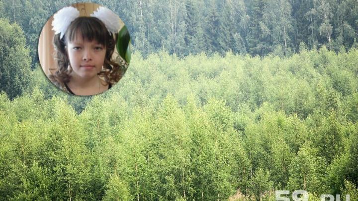 «Нашли в заброшенной деревне»: прикамские спасатели рассказали, как искали заблудившуюся в лесу пару