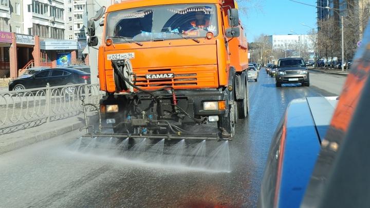 В Екатеринбурге к середине мая отмоют и покрасят ограждения вдоль дорог