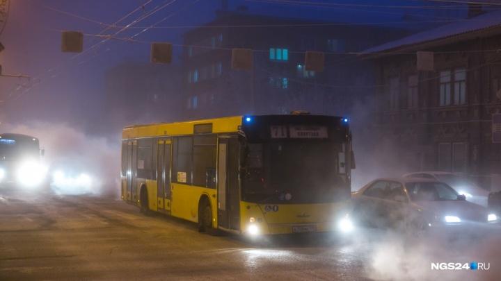 Сервисы о прибытии автобусов блокировали после идей мэрии увеличить популярность сайта о транспорте