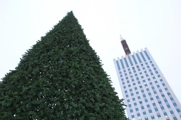 Монтаж главной ёлки города пройдет с 10 по 20 декабря