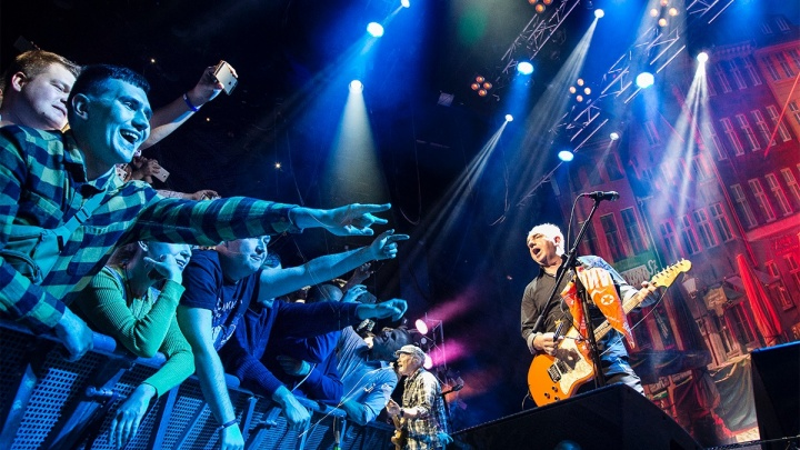 Девять событий недели: гастроли «Чайф», концерт Розенбаума и новые «Фантастические твари» в кино