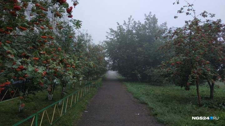 Утренний туман накрыл Красноярск. Любуемся красивыми фотографиями