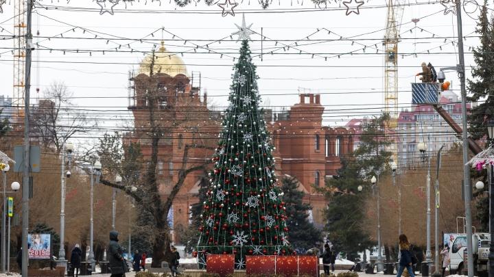 Вместо золотых «пузырей»: новую елку в центре Волгограда завесили «гулливерскими» снежинками