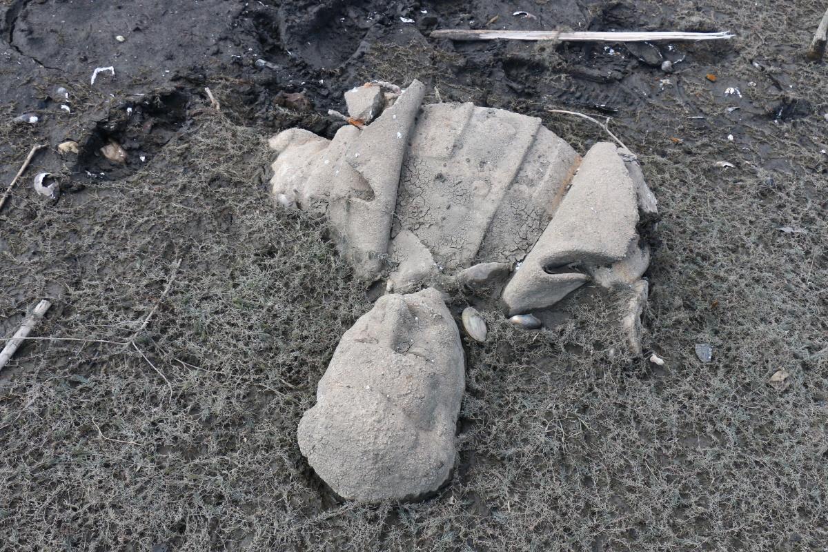Памятник Сталину в Кусе расчленили и сбросили в пруд