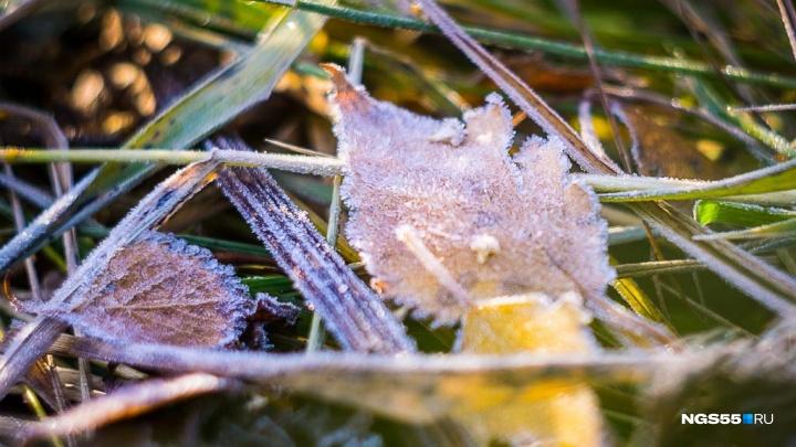 В МЧС предупредили омичей о заморозках