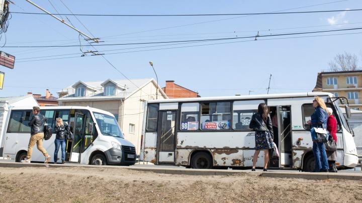 «Это полумеры»: в Ярославле обсуждают превращение маршруток в общественный транспорт