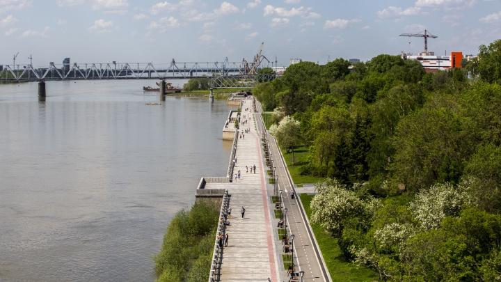 Плюс 2 километра видов на Обь: городские власти решили продлить набережную
