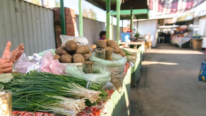 Клумбы или торговцы? Жители высказали властям, что думают о рынке на Клинической в Самаре