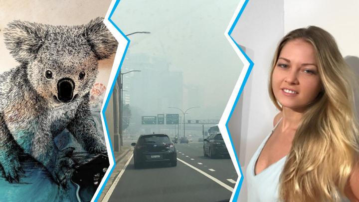 Тюменка продает картины с коалами, чтобы помочь пострадавшим животным Австралии