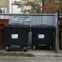 Мусор в законе: глав южноуральских городов поторопили с закупкой контейнеров для сбора отходов