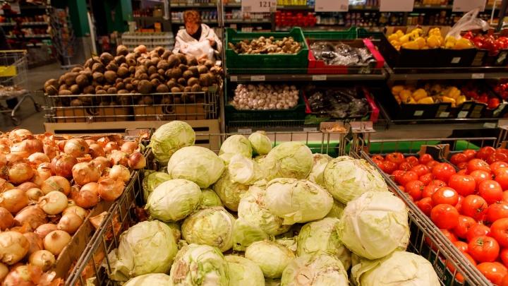 Где купить продукты посвежее и дешевле: в Волгограде открываются новые ярмарки