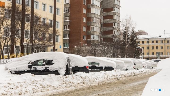 Чиновники озадачились кладбищем брошенных праворулек посреди Новосибирска