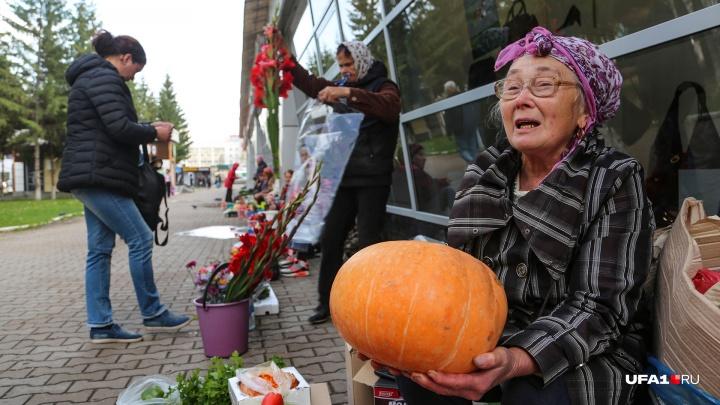 Дары осени, подготовка к Хеллоуину и бедственное положение пенсионеров: что таят стихийные рынки Уфы