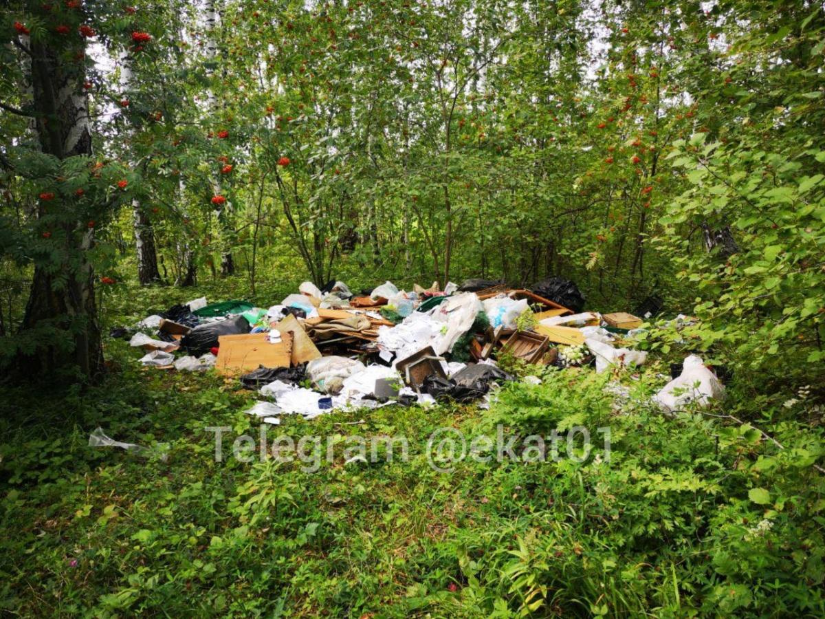 Свалка находится примерно в 40 километрах от Екатеринбурга