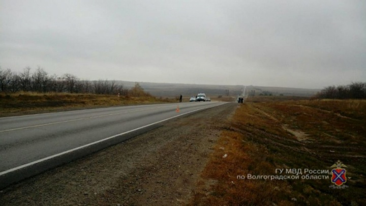 «Прятался от полиции в посадке»: под Камышином нашли водителя, уехавшего с места смертельного ДТП