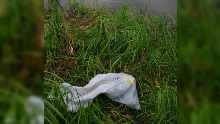 На берегу реки в Ярославле нашли мешок с утопленным щенком