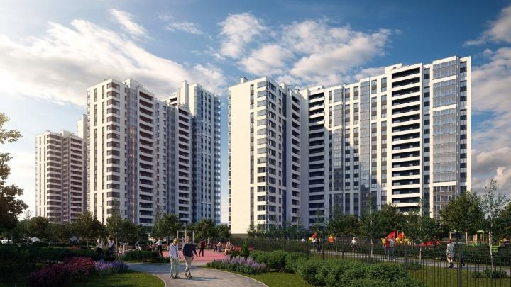 Как купить квартиру от крупнейшего застройщика России — «Группы ЛСР» с выгодой, не выезжая из города