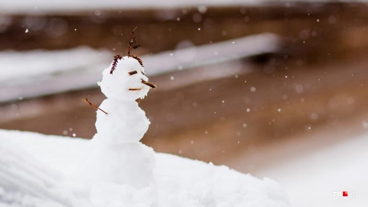 В розовой зоне: Гидрометцентр рассказал, какой будет зима 2019 в Ярославле