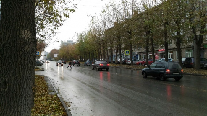 Впереди пешеходный переход, на котором сбили детей