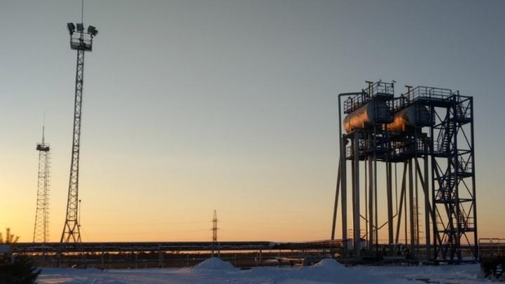 Учёные нашли залежи нефти в Новосибирской области