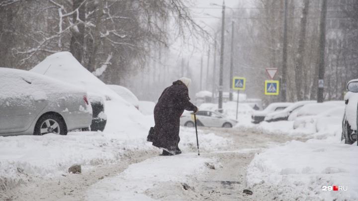 В Архангельскую область возвращаются метели и порывистый ветер