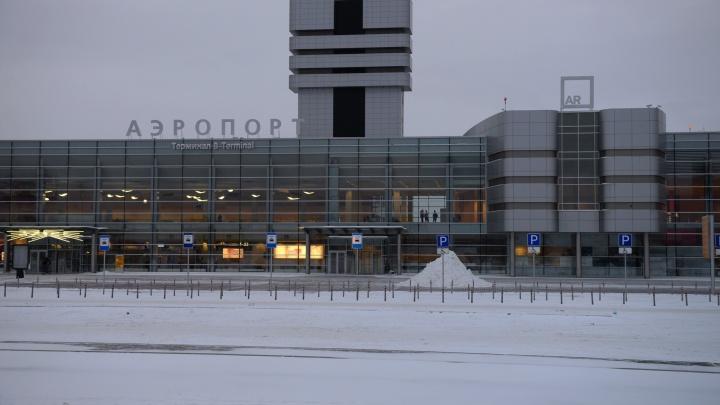 В аэропорту Кольцово задержали беглого таджика, который находился в розыске за кражу