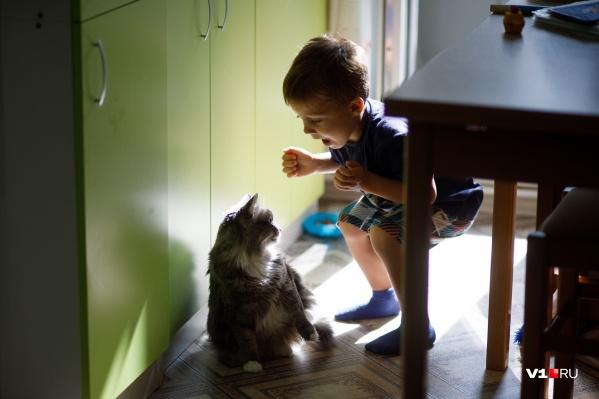 Большую часть своей жизни трехлетний Кирилл провел в больнице