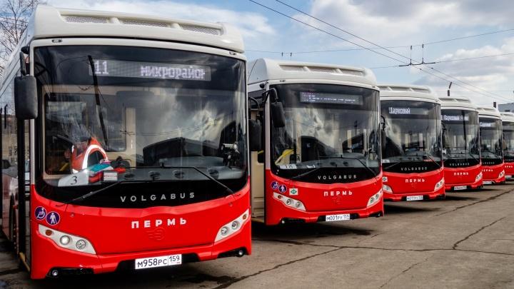 Техобслуживанием «Волгабасов» в Перми займется официальный дилер КАМАЗа