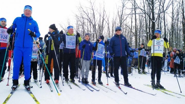 Азаров с палками и тигр-судья: тысячи самарцев вышли на «Лыжню России»
