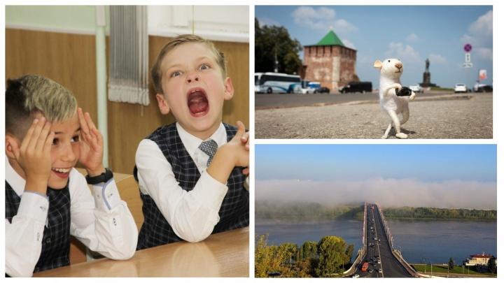 Лучшие фото этой недели: боль и радость школьников, путешествие мышонка и утренний туман