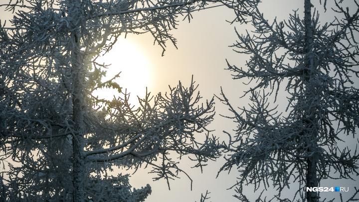 После относительно теплых выходных по Красноярску ударят серьезные морозы