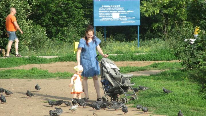 Обещанного еще 5 лет подождут: в Самаре перенесли ремонт парка «Воронежские озёра»