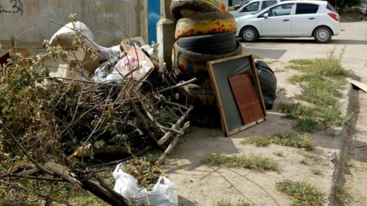 «Просили два миллиона»: в Волжском нашли деньги на утилизацию заборов и лебедей из старых шин