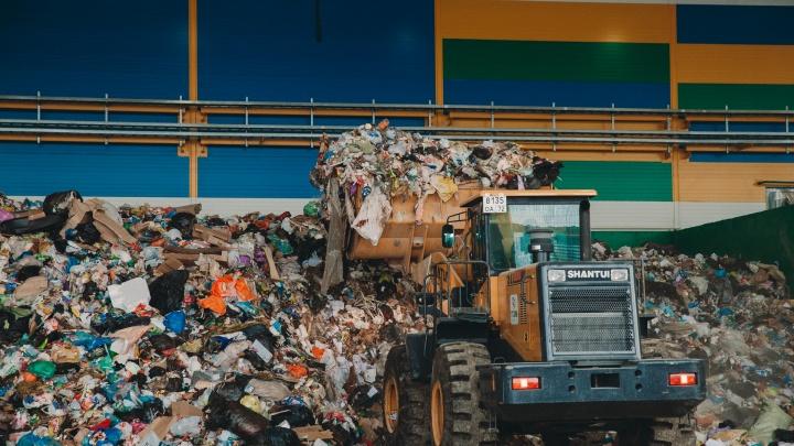Как изменится тариф, куда девать батарейки и есть ли у завода прибыль: 5 вопросов тюменцев о мусоре