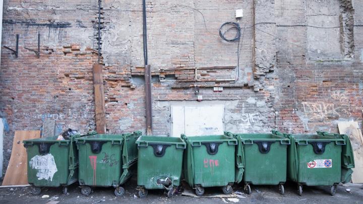 Не хватило: в Ростовской области хотят потратить еще 450 миллионов рублей на мусорные контейнеры