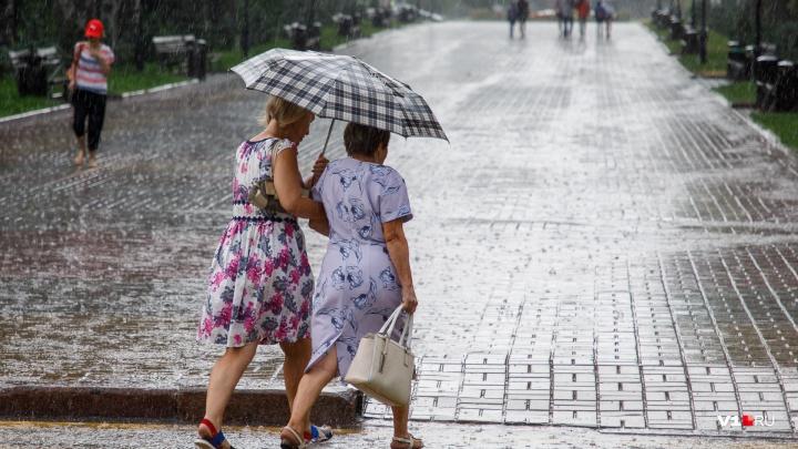 В начале новой недели Волгоградскую область продует сногсшибательным ветром до 20 м/с