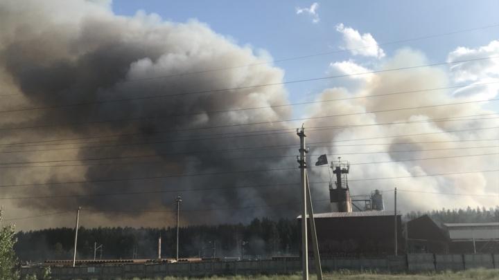 «Дым стоял стеной!»: в районе железнодорожной станции Курумоч горел лес на площади 15 га