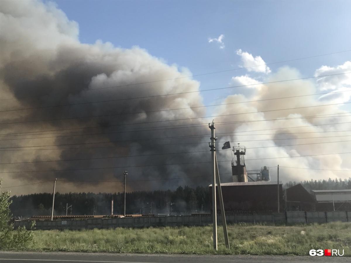 Лесной пожар возник между Царевщиной и Курумочем